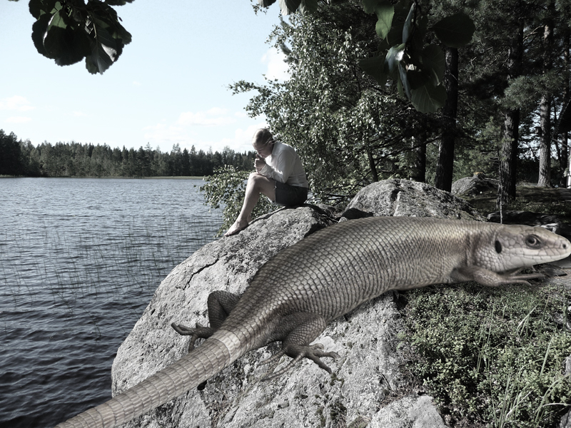 The Keihärinkoski Monster Lizard getting angry on Talvivaara